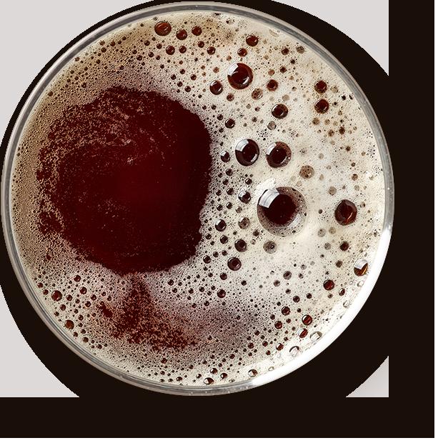 https://barmakadam.com/wp-content/uploads/2017/05/beer_transparent.png